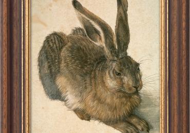 Albrecht Dürer Painting Wild Rabbit, tablou cu animale salbatice, tablouri cu animale pictate