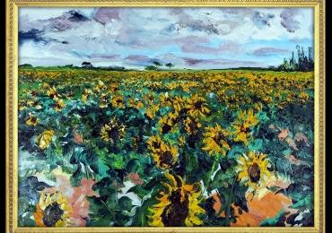 Annapolis gold millbrook. Tablou cu floarea soarelui. Tablou camp cu flori.