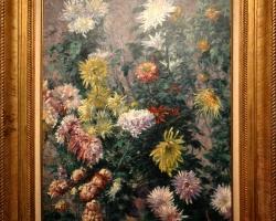 Gustave Caillebotte chrysanthemes blancs et jaunes, jardin de Petit Gennevilliers, Tablouri cu fl