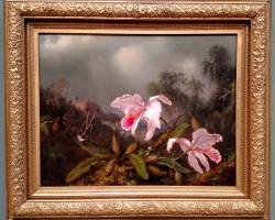 Martin Heade, Jungle Orchids and Hummingbirds, Tablouri cu orhidee si pasari la Comanda, Reproduceri Picturi Celebre cu flori