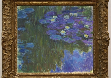 Monet Nymphéas en fleur, Tablou natura moarta, tablou natura statica cu nuferi
