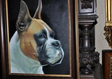 Portret animal de companie, portret de caine, tablou cu animale salbatice, tablouri cu
