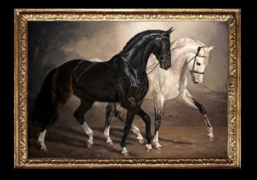 Tablou Agrement Cai Echitatie, tablou cu doi cai, tablou cu cal alb, tablou cu cal negru