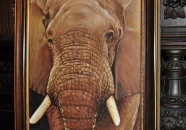Tablou cu animal de savana, tablou cu elefant, tablou cu animale salbatice