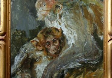 Tablou cu animale salbatice, tablou cu animale exotice, tablou cu animale salbatice, t