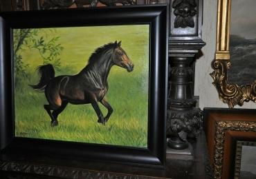 Tablou cu armasar alergand pe pasune, tablou cu animale salbatice, tablouri cu anima