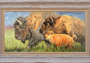 Tablou cu bizoni, Tablou cu animale salbatice, tablou cu animale exotice tablou cu an