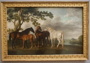 Tablou cu cai intr-un peisaj de seara, tablou cu animale salbatice, tablouri cu animale