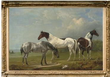 Tablou cu cai intr-un peisaj de vara, tablou cu animale salbatice, tablouri cu animale