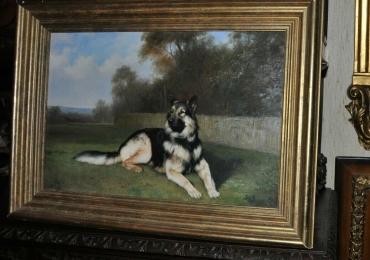 Tablou cu caine ciobanesc german, portret de caine, tablou cu animale salbatice, tablou