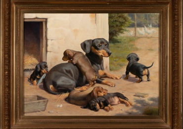 Tablou cu caini Teckel, tablou cu animale salbatice, tablouri cu animale pictate, tablo