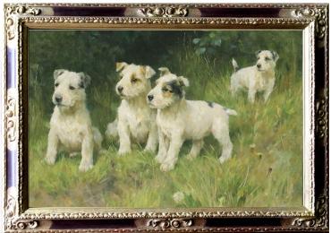 Tablou cu caini adulmecatori de trufe, tablou cu animale salbatice, tablouri cu animal