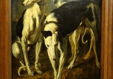 Tablou cu caini ogari, tablou cu animale salbatice, tablouri cu animale pictate, tablou