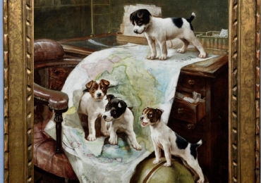 Tablou cu caini urcati pe biroul stabpanului, tablou cu animale salbatice, tablouri cu a