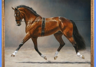Tablou cu cal de competitie,  tablou cu animale salbatice, tablouri cu animale pictate,