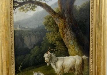Tablou cu capra si ied intr-un peisaj pastoral, tablou cu animale salbatice, tablouri cu