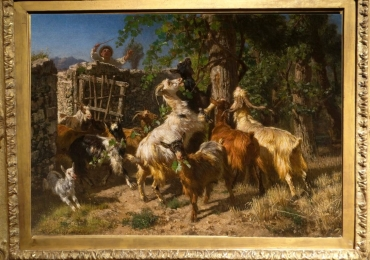 Tablou cu capre intr-un peisaj pastoral, tablou cu animale salbatice, tablouri cu anima