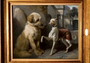 Tablou cu catei de rasa, tablou cu animale salbatice, tablouri cu animale pictate, tablo