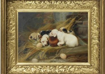 Tablou cu catei mici, tablou cu animale salbatice, tablouri cu animale pictate, tablour
