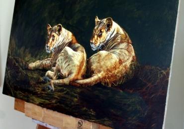 Tablou cu doi trigri, Tablou cu animale salbatice, tablou cu animale exotic