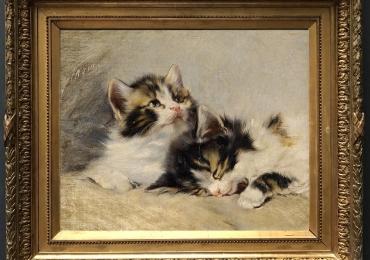 Tablou cu doua pisici, tablou cu animale salbatice, tablouri cu animale pictate, tablou