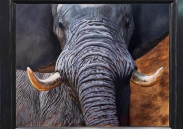 Tablou cu elefant, Tablou cu animale salbatice, tablou cu animale exotice