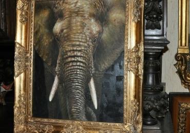 Tablou cu elefant, tablou cu animale salbatice, tablouri cu animale pictate, tablouri cu