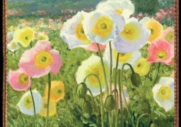 Tablou cu flori de camp, Tablou peisaj cu flori salbatice, Tablou cu tema abstracta, tablou inmpresionist, tablou sufragerie