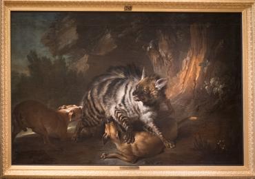 Tablou cu hiena si caini de vanatoare, tablou cu animale salbatice, tablouri cu animal