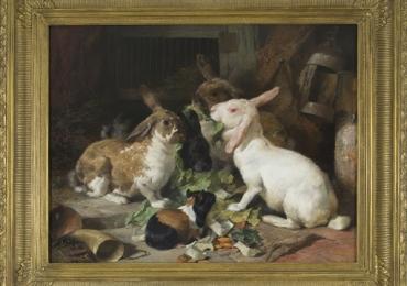 Tablou cu  iepuri si porc de guinea, tablou natura moarta, tablou cu animale salbatice