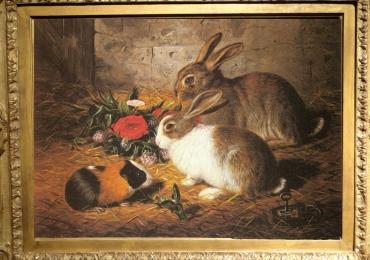 Tablou cu iepuri si porci de guineea, tablou cu animale salbatice, tablouri cu animale