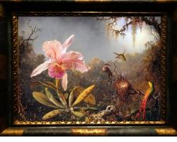 Tablou cu orhidee picturi florale Martin Johnson Heade, Pictura cu flori