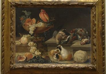Tablou cu papagal porci de guineea fructe si pasari vanate, tablou natura moarta, tabl