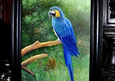 Tablou cu pasare, tablou cu papagal albastru, tablou cu animale salbatice, tablouri cu