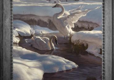 Tablou cu pasari, Lebede intr-un peisaj de iarna pe un rau, tablou cu animale salbatic