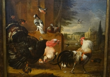 Tablou cu pasari domestice,  tablou cu animale salbatice, tablouri cu animale pictate,