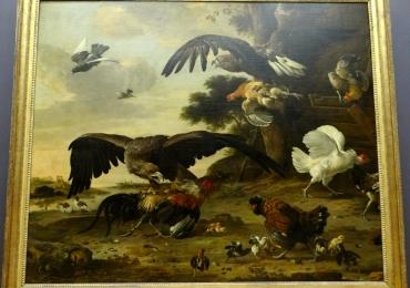 Tablou cu pasari, tablou cu animale salbatice, tablouri cu animale pictate, tablouri cu
