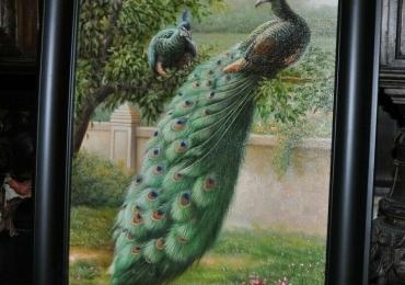 Tablou cu pauni intr-un peisaj de vara cu multa verdeata, tablou cu animale salbatice,