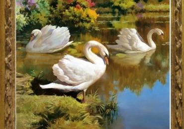 Tablou cu peisaj de vara cu lac si lebede, tablou cu animale salbatice, tablouri cu ani