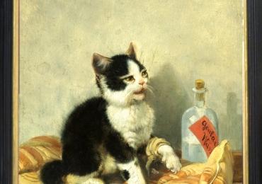 Tablou cu  pisic asezat pe pernuta, , tablou cu animale salbatice, tablouri cu animale