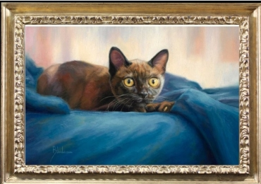 Tablou cu  pisica in paturica albastra, , tablou cu animale salbatice, tablouri cu anima