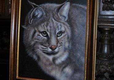 Tablou cu pisica salbatica, tablou cu animale salbatice, tablouri cu animale pictate, ta