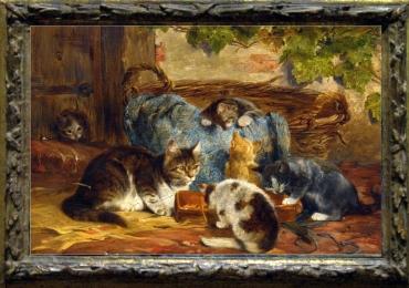 Tablou cu  pisici in cosul impetit, tablou cu animale salbatice, tablouri cu animale pic