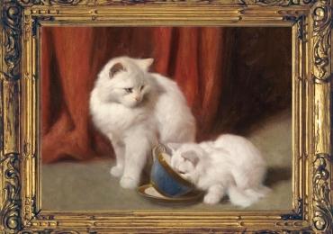 Tablou cu pisici persane tablou cu animale salbatice, tablouri cu animale pictate, tabl