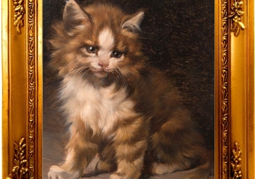 Tablou cu  pui de Pisica persana, tablou cu animale salbatice, tablouri cu animale pic