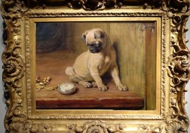 Tablou cu pui de buldog francez, tablou cu animale salbatice, tablouri cu animale pic