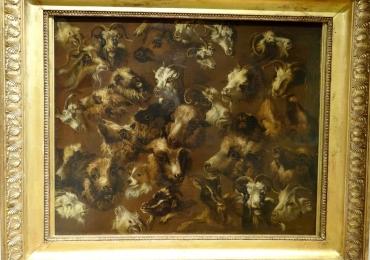 Tablou cu rase de cornute, tablou cu capre, tablou cu animale salbatice, tablouri cu an