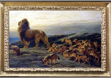 Tablou cu regele leui si o haita de lupi, tablou cu animale salbatice, tablouri cu anima