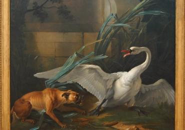 Tablou cu un caine atacand o lebada, tablou cu animale salbatice, tablouri cu animale