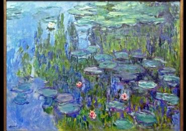 Tablou dimensiune mare, tablou cu flori, Claude Monet Ninfee, Pictura Flori de nufar, Tablou abstract, tablou inmpresionist, tablou sufragerie